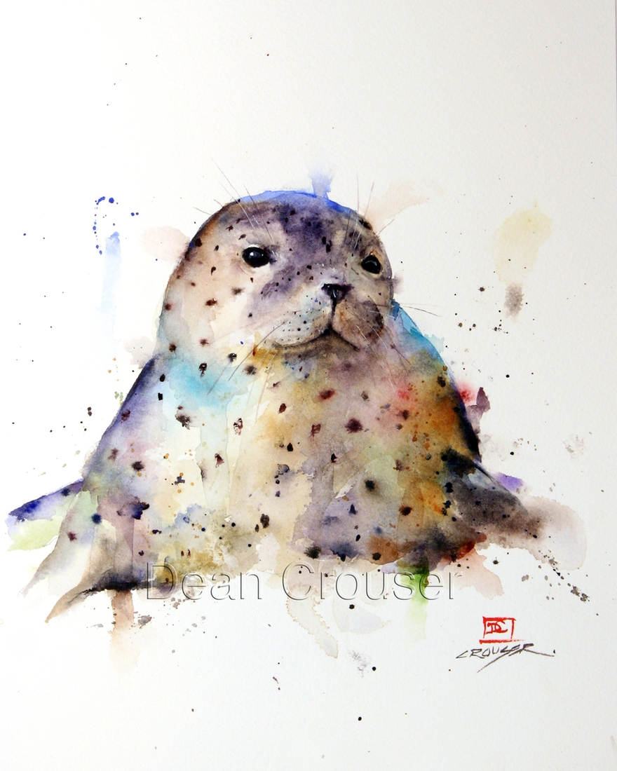 06-Harbor-Seal-Dean-Crouser-A-Love-of-the-Outdoors-Spawns-Animal-Watercolor-Paintings-www-designstack-co