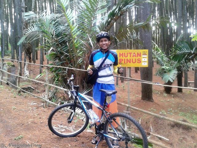 Hutan Pinus Bantul