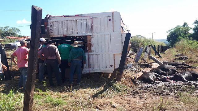 NOBRES: Carreta carregada de gado tomba e deixa moradores da zona rural por mais 15h sem energia