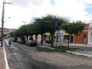 Em Picuí, podas das históricas árvores na Rua Ferreira de Macedo e o Campo Sustentável