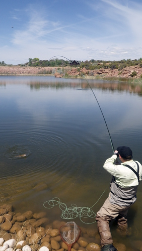 Tuesday Tip: Get Naked for Nymphing in Still Water - Orvis