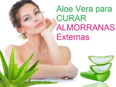 Aloe-Vera-para-Almorranas-Externas-Remedios-Caseros
