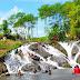 Wisata Jogja Vs Malang