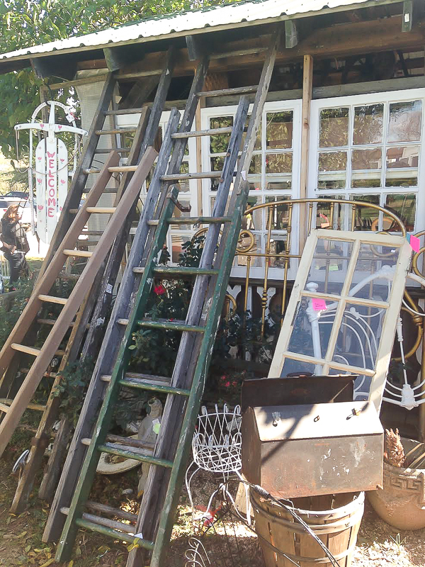 vintage ladders and windows