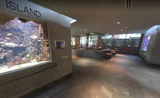 Dallas World Aquarium is a for-profit aquarium in Dallas Texas