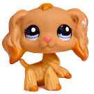 Littlest Pet Shop Carry Case Spaniel (#1716) Pet