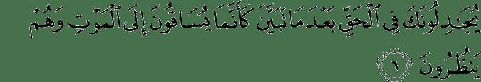Surat Al Anfal Ayat 6