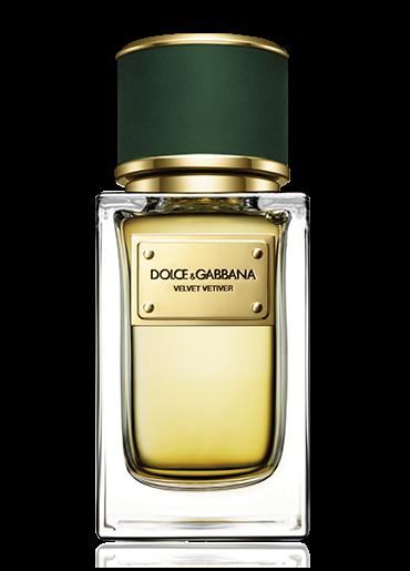 Gabbana Dolceamp; Gabbana De Velvet Dolceamp; Velvet Collection Collection Collection De Velvet 08kOXnwP