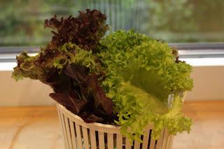 dreierlei Salat