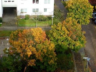 Es wird Herbst in Hohenschönhausen