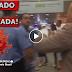 [Vídeo] Deputado autor da emenda que golpeou Lava Jato levou TOMATADA