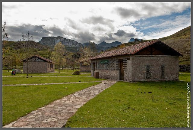 Lagos de Covadonga: Arboreto