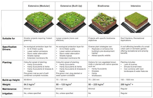 Green Roof Types, commercial roofing systems