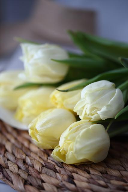 #tulppaanitorstai, tulppaani, tulips