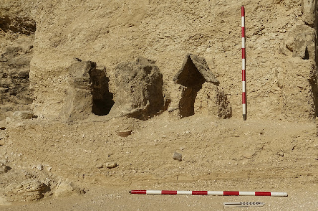 4,000-year-old funerary garden discovered at Egyptian tomb entrance