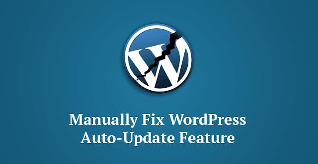 wordpress-otomatik-guncelleme-hatasi