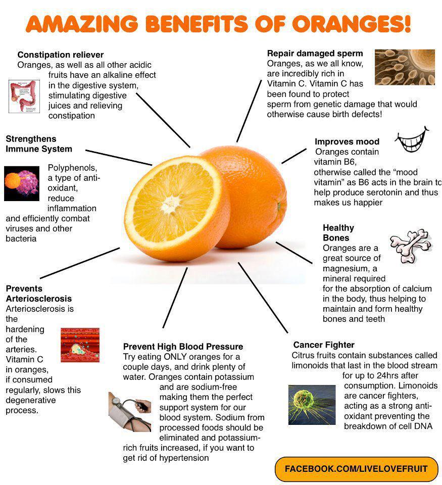 Foods High In Vitamen B