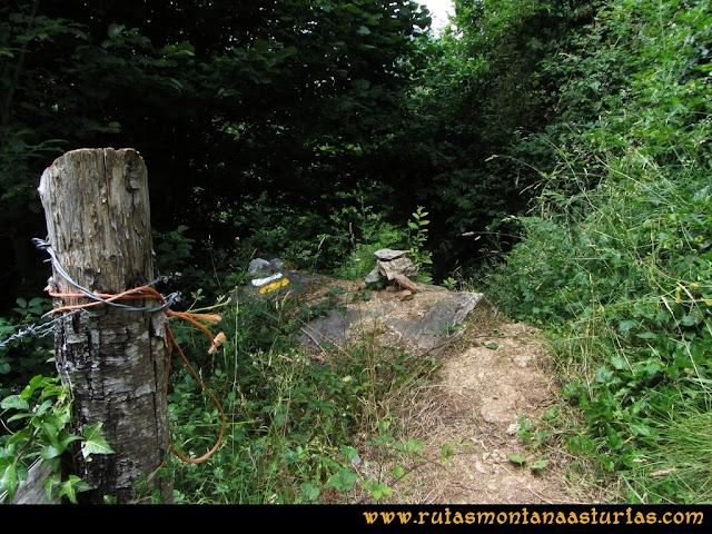 Ruta Bosques de Moal: marca y jito en el camino