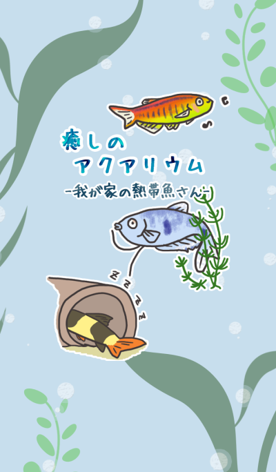 Tropical fishes of my home aquarium