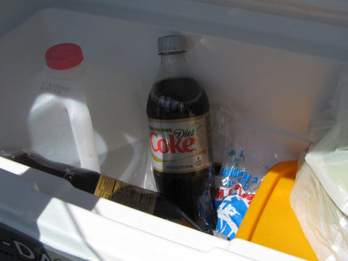 cold Diet Coke