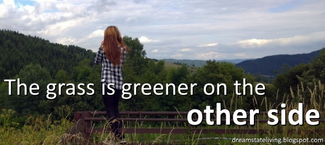 picture of a girl taking a picture over the fence as the grass is greener on the other side