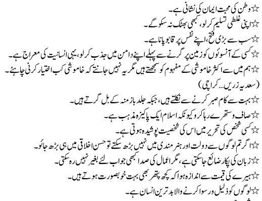 essay on watan ki muhabbat