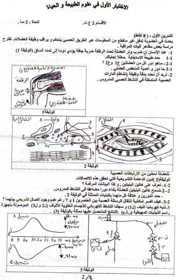 امتحان الثلاثي الأول في مادة علوم الطبيعة والحياة