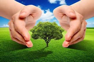 पर्यावरण से प्रेम