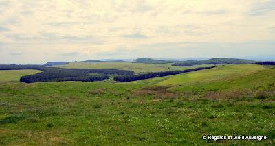 Auvergne, le pays d'Artense, la Lande.