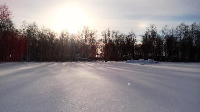Охота на зайца зимой в Омской области