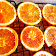 Drying Citrus (without dehydrator) Firsties