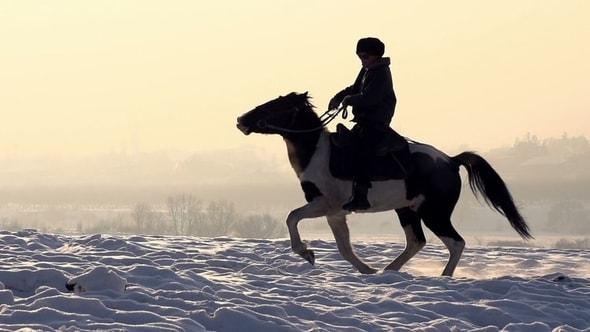 لقطات للمونتاج | رجل على حصان في حقل من الثلج