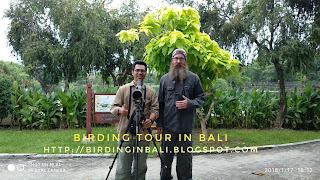 Birding at pulau Serangan Bali