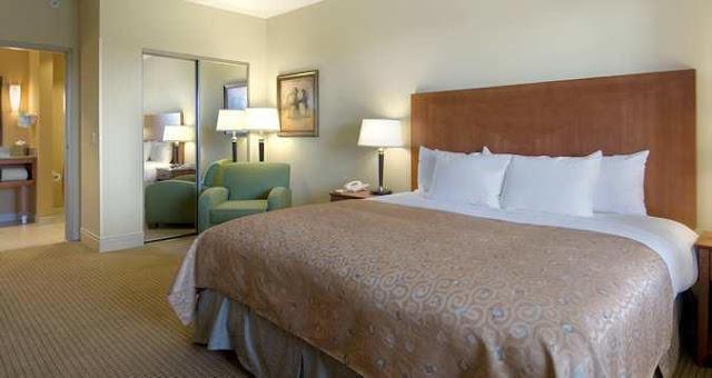 Hotel Hilton St. Petersburg Carillon Park: quarto