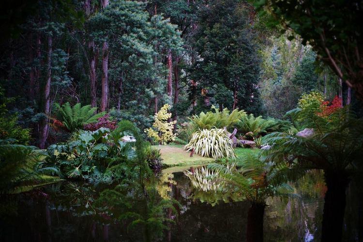 Gardens of Lucindale. Tasmania. Australia