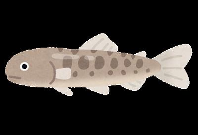 サケの稚魚のイラスト