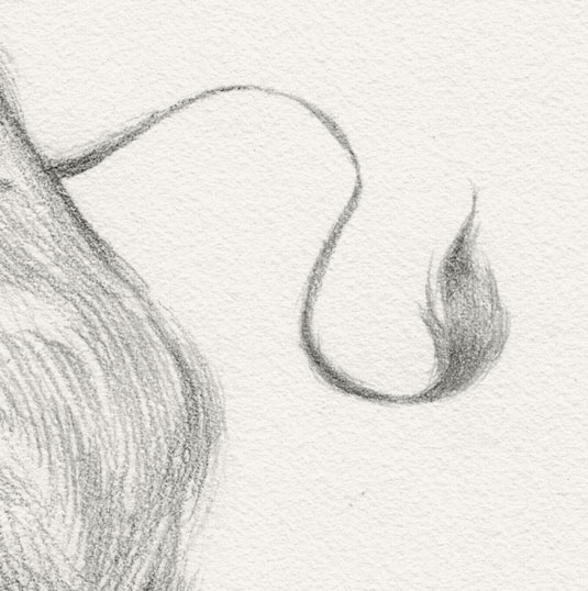 10 Tips Menggambar Sketsa Untuk Pemula