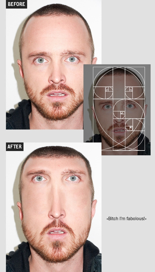 02-Jesse-Pinkman-Igor-Kochmala-Plastic-Surgery-using-the Fibonacci-Sequence-www-designstack-co
