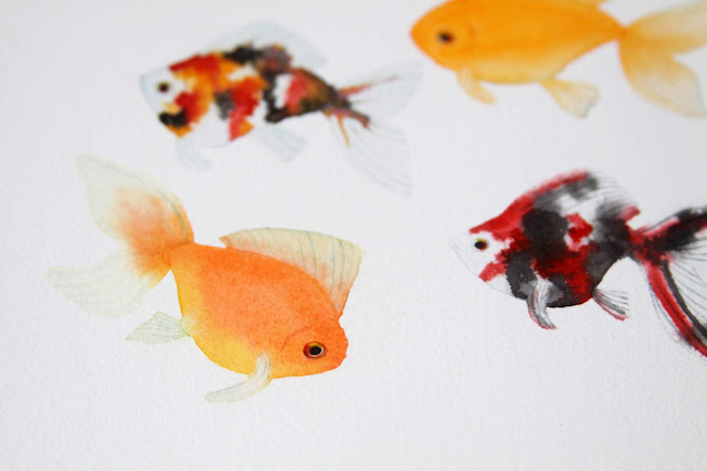 watercolor goldfish, paintings, goldfish, watercolor, Anne Butera, My Giant Strawberry