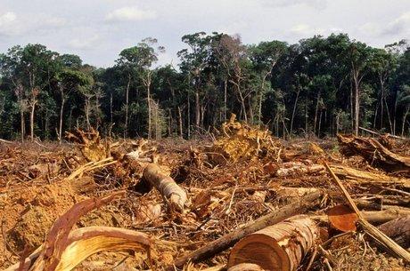 desmatamento da amazonia em foto de 2007 30102018120809858 - Amazônia perdeu 20% desde 1970 e Cerrado, 50%, aponta relatório