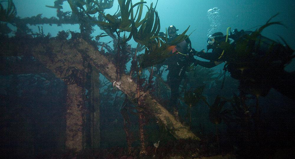 Βακτήρια που «τρώνε» πετρέλαιο βρέθηκαν στα βάθη των ωκεανών