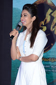 Rakul Preeth at Sarrainodu Success Meet-thumbnail-2