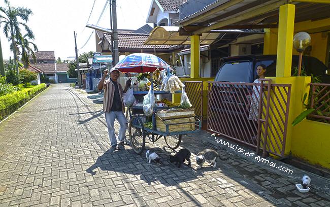 Vendedor ambulante de frutas y verduras en Yakarta