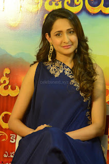 Pragya Jaiswal in beautiful Blue Gown Spicy Latest Pics February 2017 109.JPG