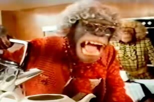 Last Surviving Chimpanzee From The Famous PG Tips Adverts Has Died