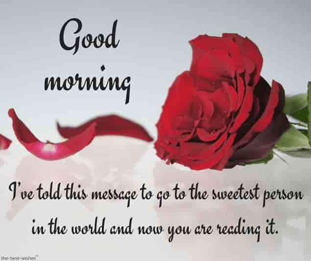 good morning text messages for boyfriend with red rose