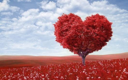 Pantun Puisi Kata Cinta Romantis Bahasa Arab beserta Terjemahannya
