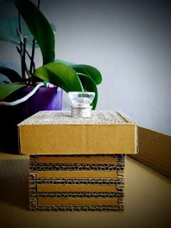 cadeau carton cardboard gift