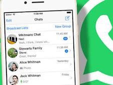 Cara Terlihat Offline di WhatsApp Meskipun  Sedang Online