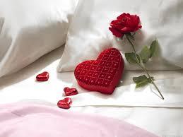 الحب ونسائم الحياة